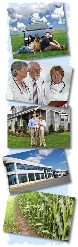 auto, health, home, life, commercial and crop insurance